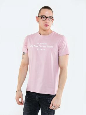 Базовая футболка с надписью REAGENS 600